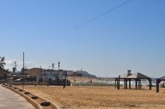 Israel 2014 IFL 009