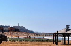 Israel 2014 IFL 010