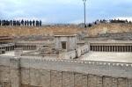 Israel 2014 IFL 241