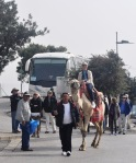 Israel 2014 IFL 319