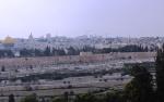 Israel 2014 IFL 331