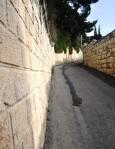 Israel 2014 IFL 335
