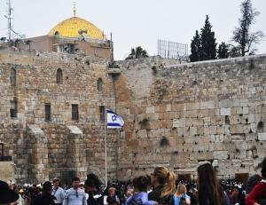 Israel 2014 IFL 396