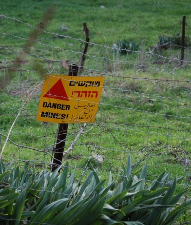 Israel 2008 159